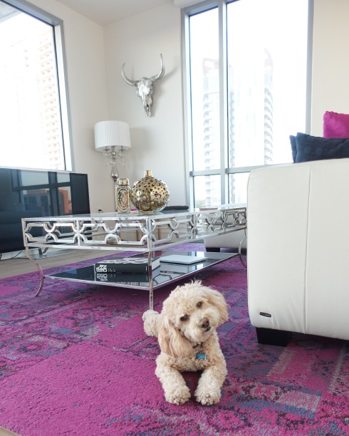 downtown-condo-z-gallerie-silver-skull-silver-table-poodle-dog
