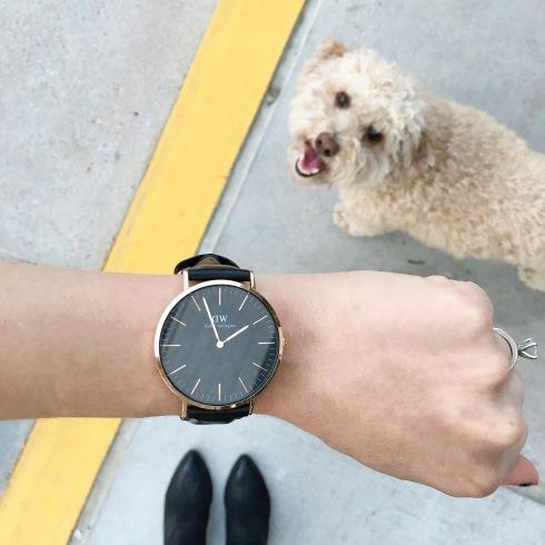 daniel-wellington-black-watch-poodle-duke
